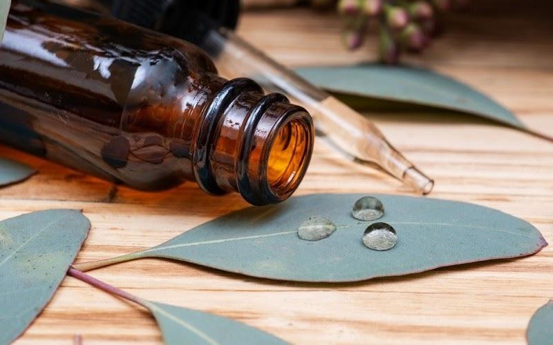 phân biệt tinh dầu tràm nguyên chất