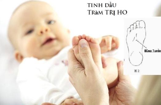 tác dụng của tinh dầu tràm cho trẻ sơ sinh là điều được nhiều người công nhận