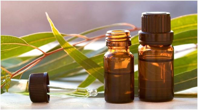 tinh dầu tràm được sử dụng để đuổi muỗi