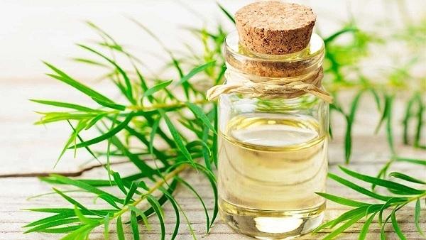 Tinh dầu trầm hương mua ở đâu? Mua ở lavendercare.vn là tốt nhất